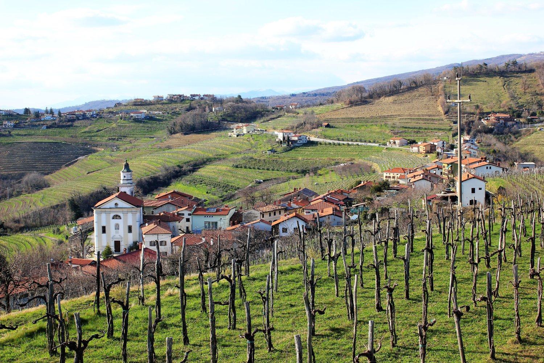 Viaggio in Slovenia, Panorama di Kojsko visto dalla chiesa di Santa Croce (Brda)