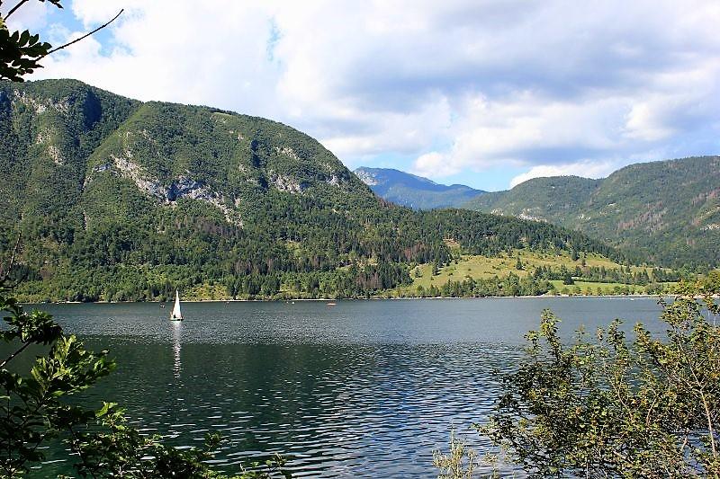 Panorama lago Bohinj