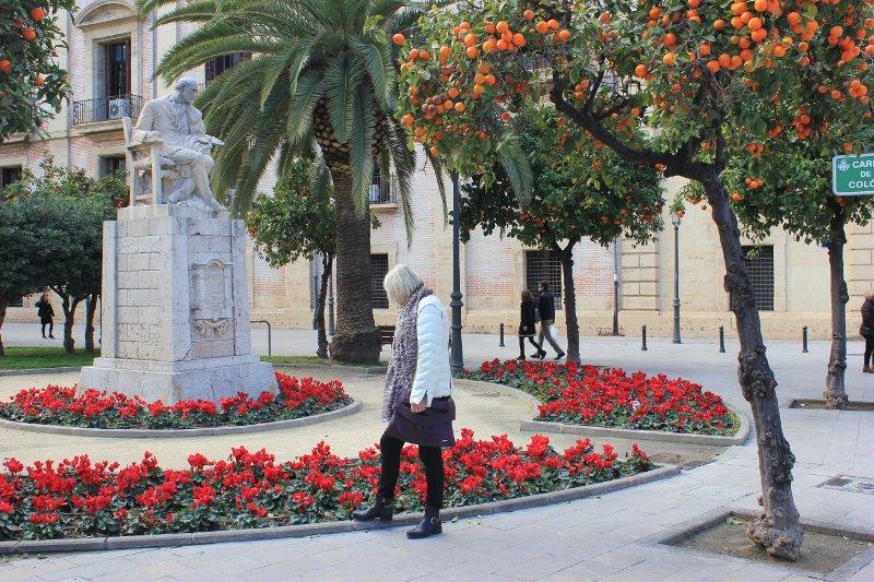 Giardino nel Carrer de Colon a Valencia