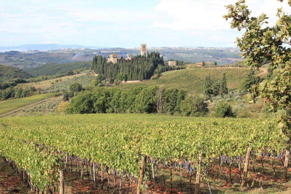 Panorama sulla Badia a Passignano