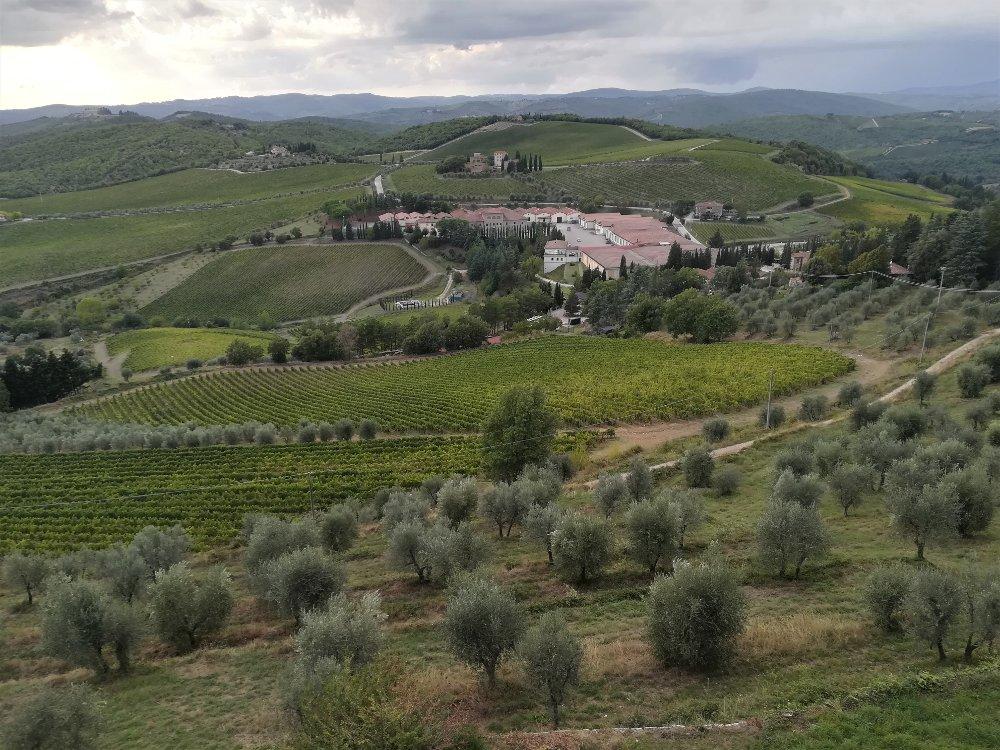 Panorama della tenuta del Barone Ricasoli al Castello di Brolio